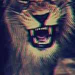 Sonny___