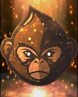 Macaco Social